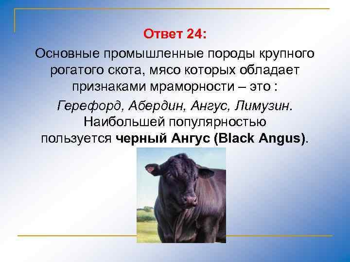 Ответ 24: Основные промышленные породы крупного рогатого скота, мясо которых обладает признаками мраморности –