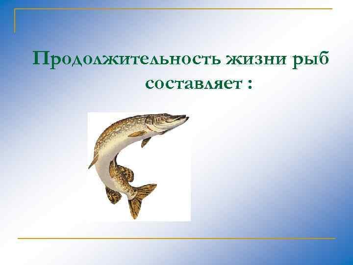 Продолжительность жизни рыб составляет :