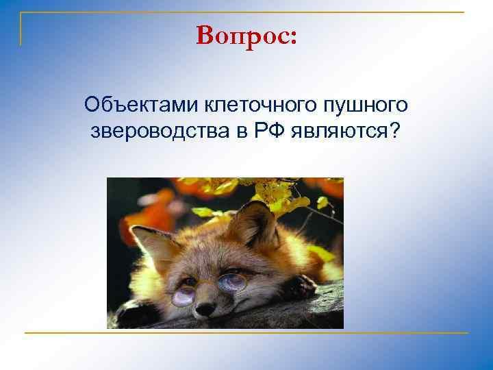 Вопрос: Объектами клеточного пушного звероводства в РФ являются?