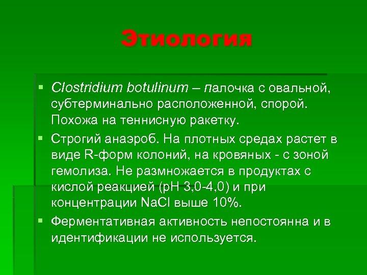 Этиология § Clostridium botulinum – палочка с овальной, субтерминально расположенной, спорой. Похожа на теннисную