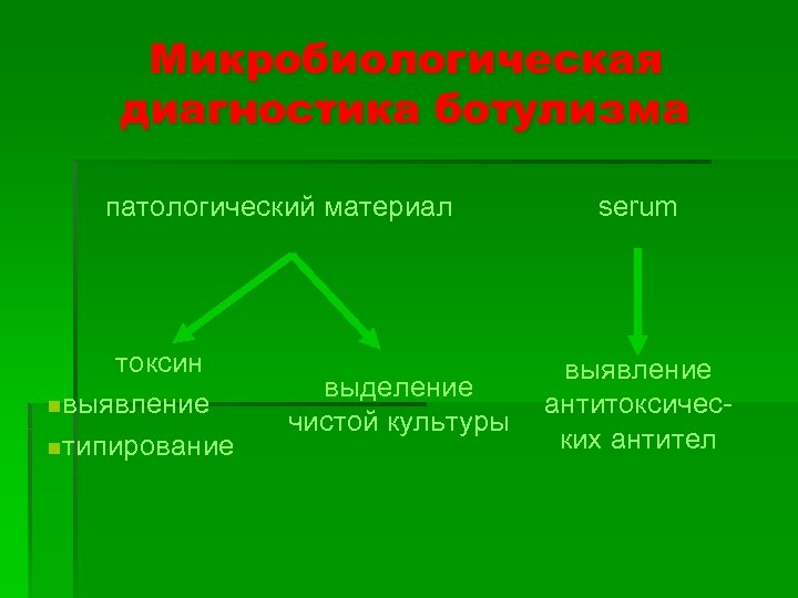 Микробиологическая диагностика ботулизма патологический материал токсин nвыявление nтипирование выделение чистой культуры serum выявление антитоксических