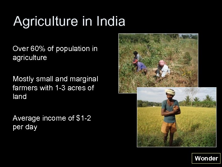 Agriculture in India Over 60% of population in agriculture Mostly small and marginal farmers