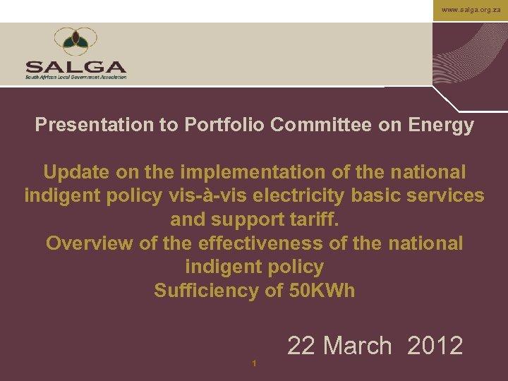 www. salga. org. za Presentation to Portfolio Committee on Energy Update on the implementation