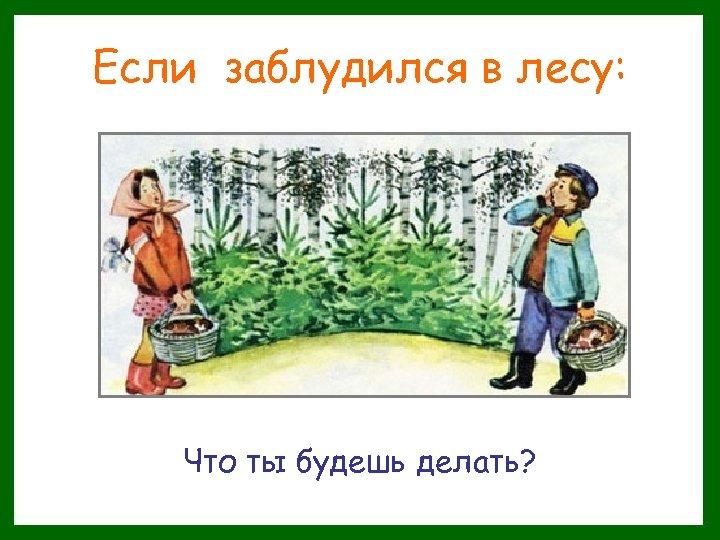 Если заблудился в лесу: Что ты будешь делать?