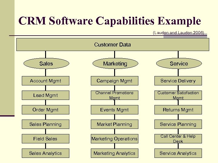 CRM Software Capabilities Example (Laudon and Laudon 2006) Customer Data Sales Marketing Service Account
