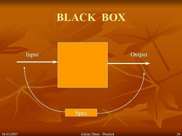BLACK BOX Input Output Spec 24. 03. 2007 Adrian Iftene - Practică 24