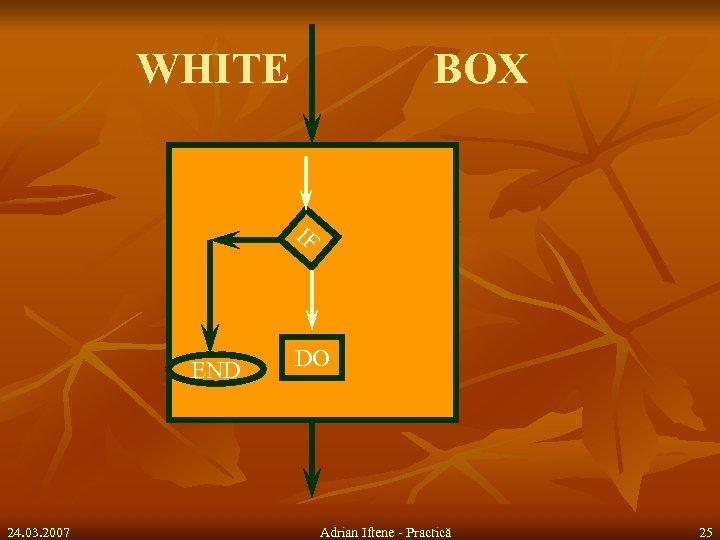WHITE BOX IF END 24. 03. 2007 DO Adrian Iftene - Practică 25