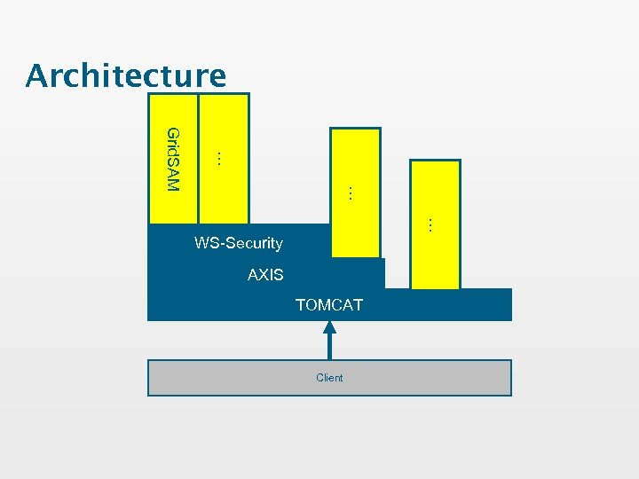 Architecture … … Grid. SAM … WS-Security AXIS TOMCAT Client