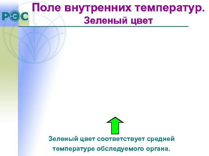 Поле внутренних температур. Зеленый цвет соответствует средней температуре обследуемого органа.