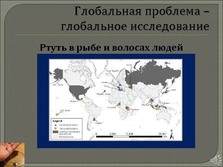 Глобальная проблема – глобальное исследование Ртуть в рыбе и волосах людей