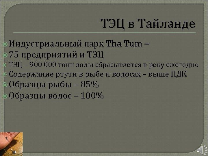 ТЭЦ в Тайланде Индустриальный парк Tha Tum – 75 предприятий и ТЭЦ – 900