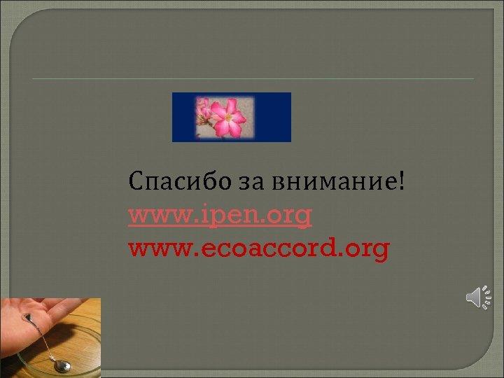 Спасибо за внимание! www. ipen. org www. ecoaccord. org
