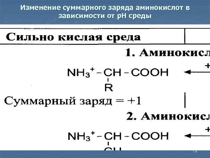 Изменение суммарного заряда аминокислот в зависимости от р. Н среды 14