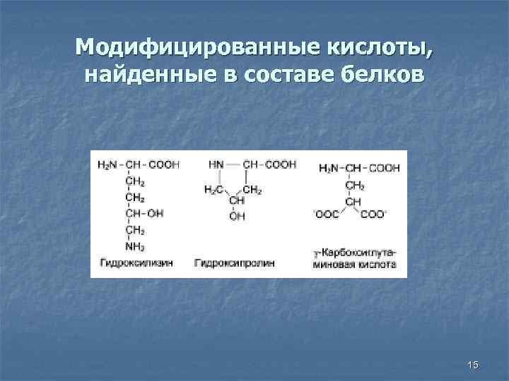 Модифицированные кислоты, найденные в составе белков 15