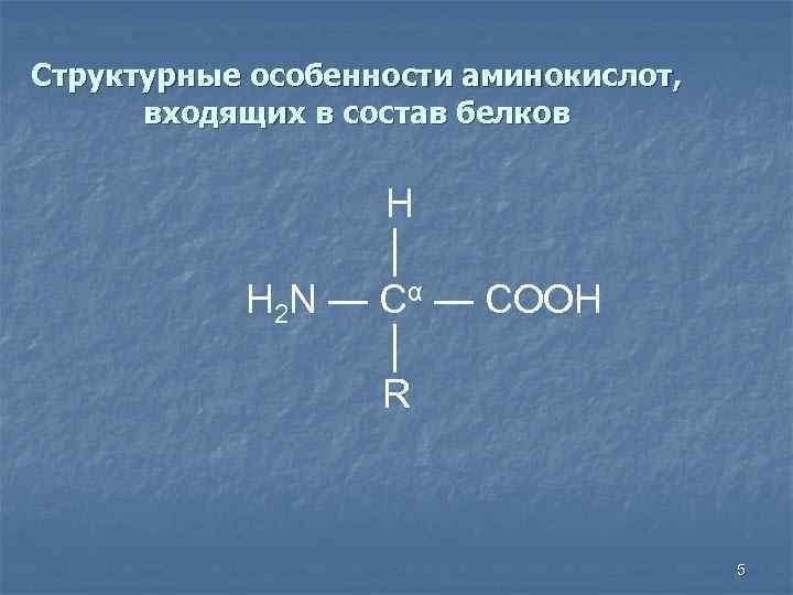Структурные особенности аминокислот, входящих в состав белков H │ H 2 N — Cα