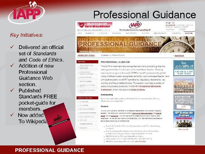 Professional Guidance Key Initiatives: ü Delivered an official set of Standards and Code of