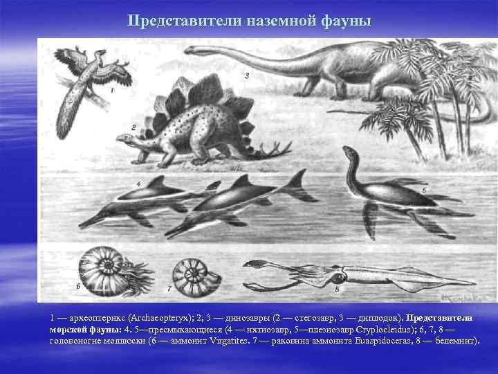 Представители наземной фауны 1 — археоптерикс (Archaeopteryx); 2, 3 — динозавры (2 — стегозавр,