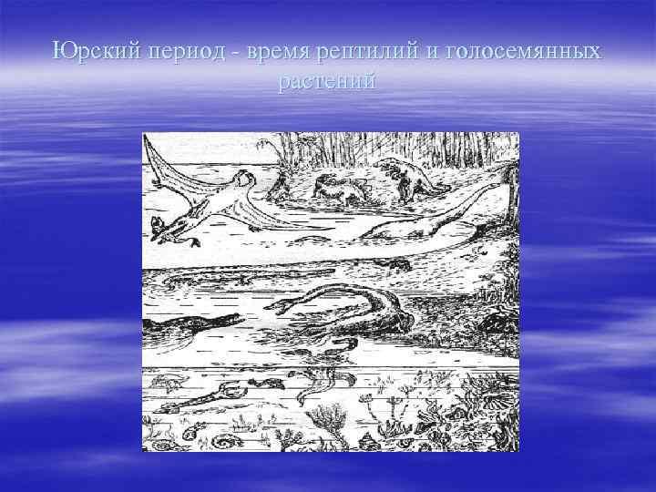 Юрский период - время рептилий и голосемянных растений