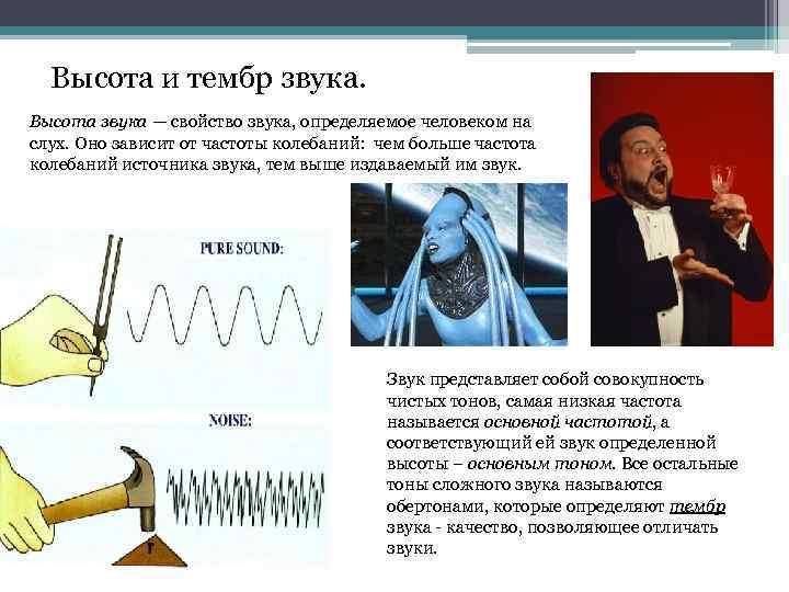 Высота и тембр звука. Высота звука — свойство звука, определяемое человеком на слух. Оно