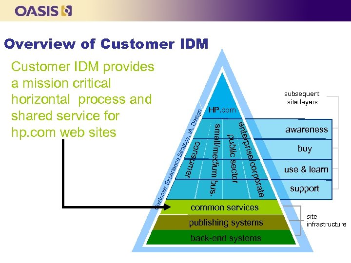 Overview of Customer IDM n De sig IA, gy, ate Str ce rien xpe