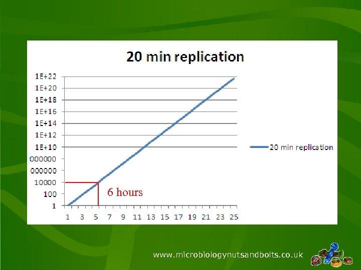 6 hours www. microbiologynutsandbolts. co. uk