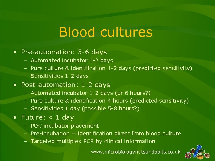 Blood cultures • Pre-automation: 3 -6 days – Automated incubator 1 -2 days –