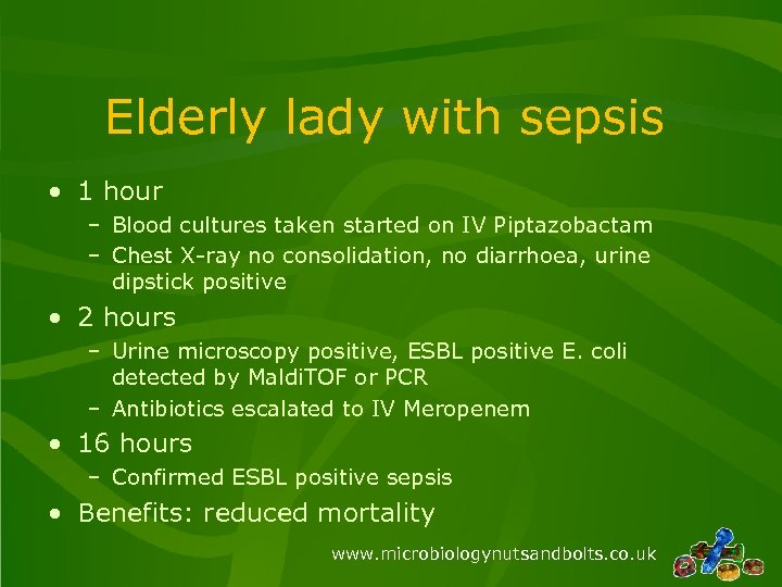 Elderly lady with sepsis • 1 hour – Blood cultures taken started on IV