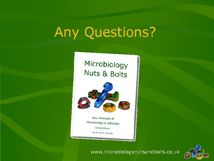 Any Questions? www. microbiologynutsandbolts. co. uk