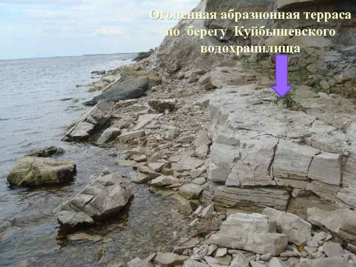 Оголенная абразионная терраса по берегу Куйбышевского водохранилища