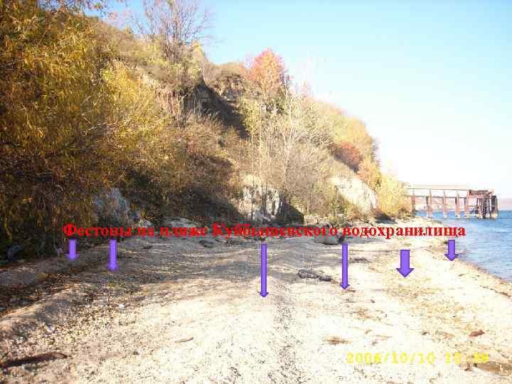 Фестоны на пляже Куйбышевского водохранилища