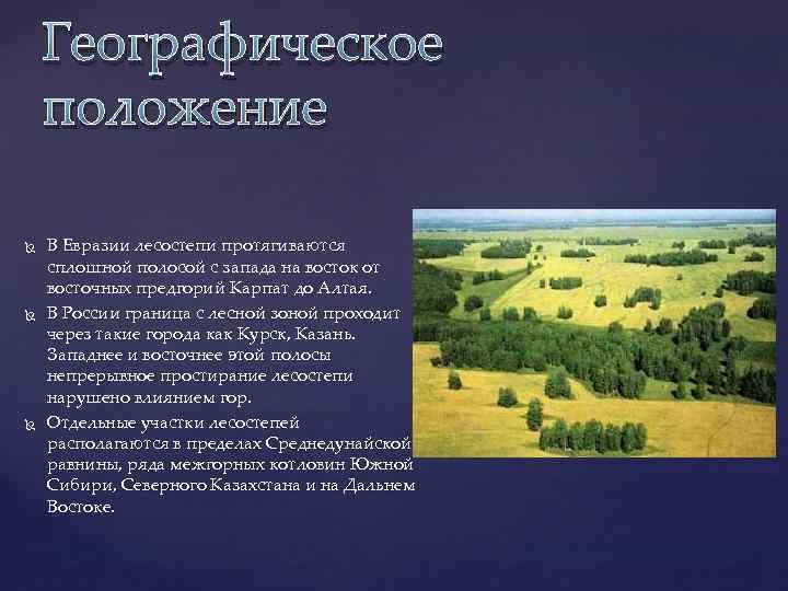 Географическое положение В Евразии лесостепи протягиваются сплошной полосой с запада на восток от восточных