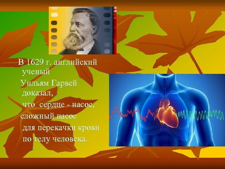 В 1629 г. английский ученый Уильям Гарвей доказал, что сердце - насос, сложный насос
