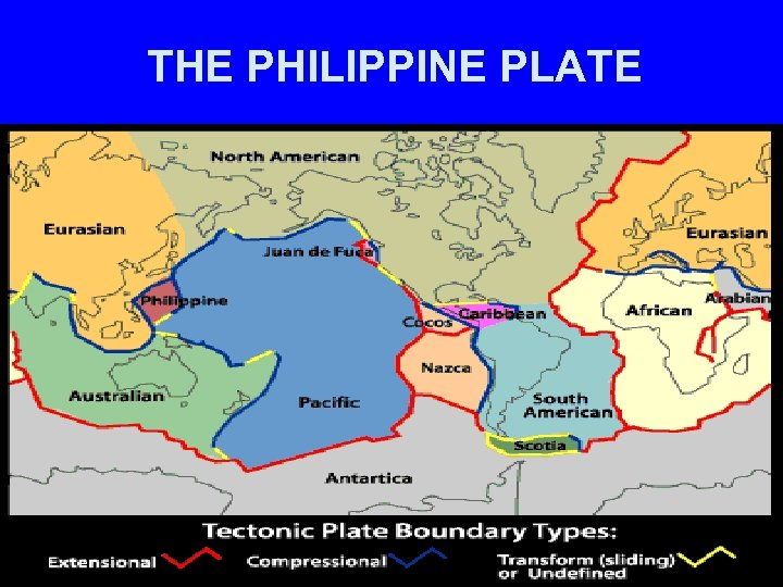 THE PHILIPPINE PLATE
