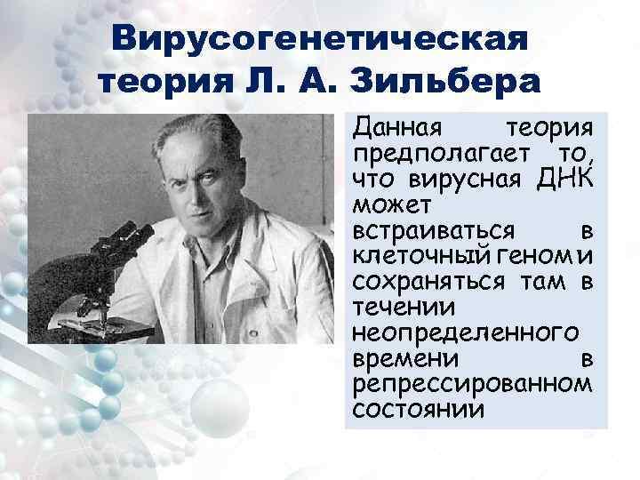 Вирусогенетическая теория Л. А. Зильбера Данная теория предполагает то, что вирусная ДНК может встраиваться
