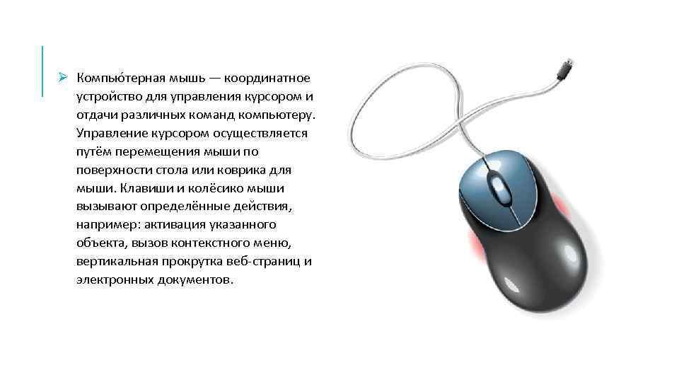 Ø Компью терная мышь — координатное устройство для управления курсором и отдачи различных команд