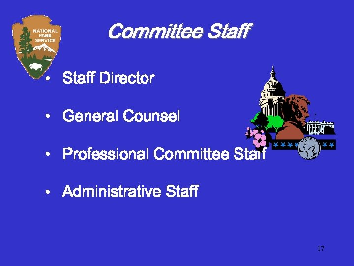 Committee Staff • Staff Director • General Counsel • Professional Committee Staff • Administrative