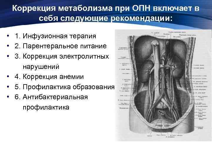 Коррекция метаболизма при ОПН включает в себя следующие рекомендации: • 1. Инфузионная терапия •