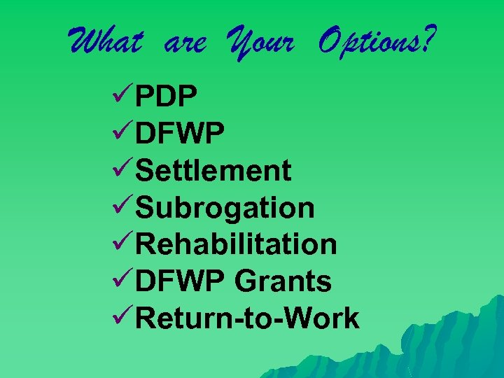 What are Your Options? üPDP üDFWP üSettlement üSubrogation üRehabilitation üDFWP Grants üReturn-to-Work