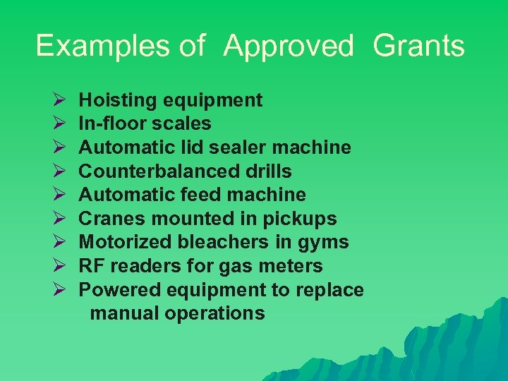 Examples of Approved Grants Ø Ø Ø Ø Ø Hoisting equipment In-floor scales Automatic