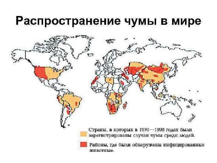 Распространение чумы в мире