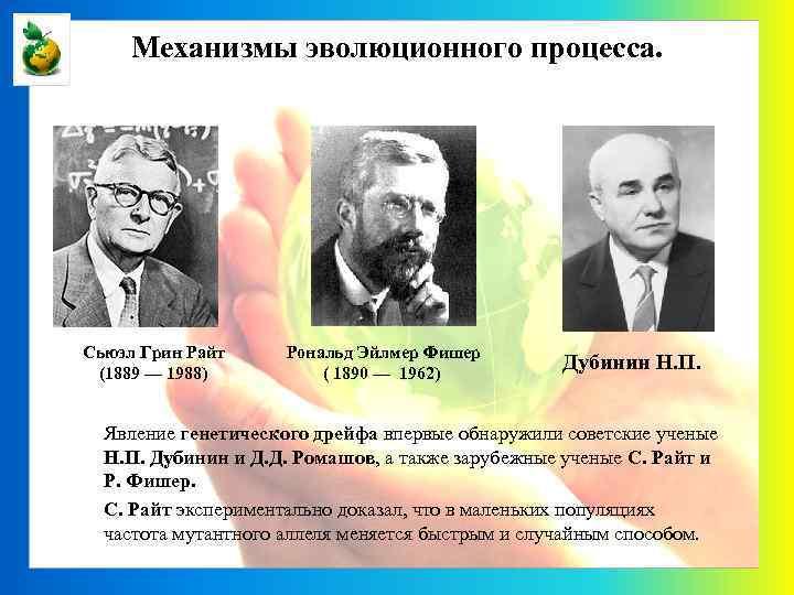 Механизмы эволюционного процесса. Сьюэл Грин Райт (1889 — 1988) Рональд Эйлмер Фишер ( 1890