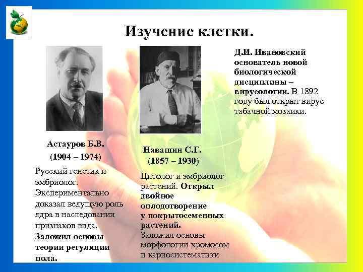 Изучение клетки. Д. И. Ивановский основатель новой биологической дисциплины – вирусологии. В 1892 году
