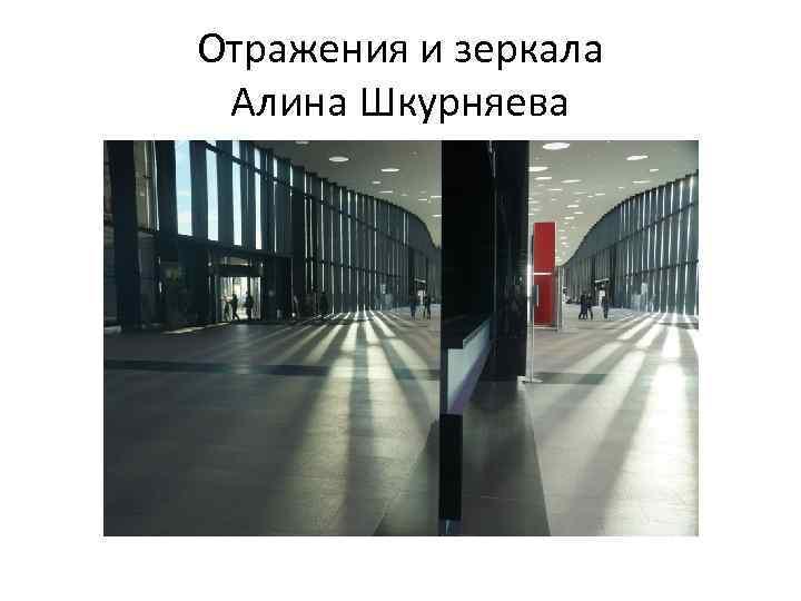 Отражения и зеркала Алина Шкурняева