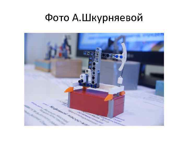 Фото А. Шкурняевой