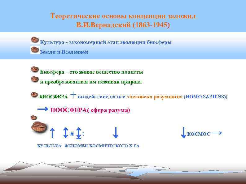 Теоретические основы концепции заложил В. И. Вернадский (1863 -1945) Культура - закономерный этап эволюции