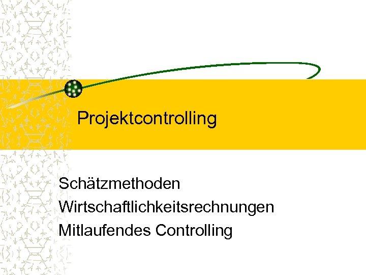 Projektcontrolling Schätzmethoden Wirtschaftlichkeitsrechnungen Mitlaufendes Controlling