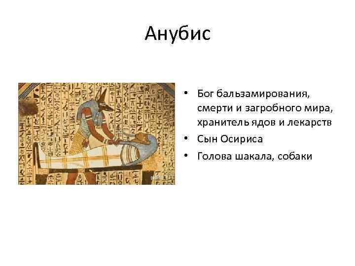 Анубис • Бог бальзамирования, смерти и загробного мира, хранитель ядов и лекарств • Сын