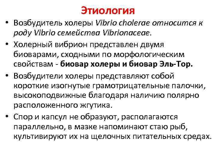 Этиология • Возбудитель холеры Vibrio cholerae относится к роду Vibrio семейства Vibrionaceae. • Холерный