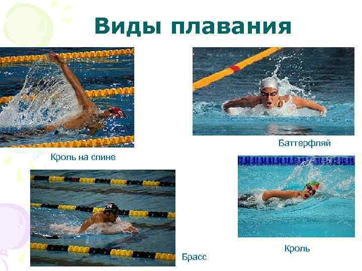 Все виды плавания фото и названия