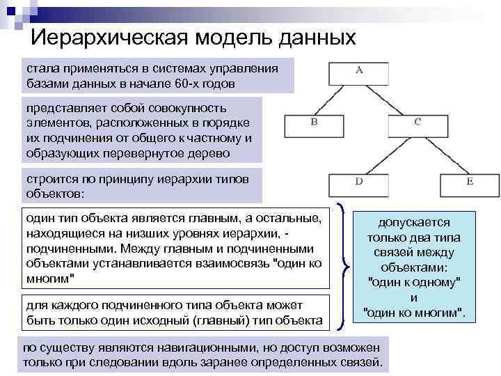 Иерархическая модель данных стала применяться в системах управления базами данных в начале 60 -х